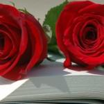 6 libros más revelantes en Marketing Online para Sant Jordi